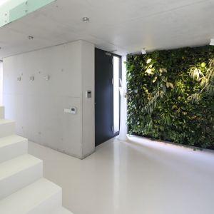 W tym przedpokoju postawiono na spektakularną zieloną ścianę. Projekt Hanna i Seweryn Nogalscy. Fot. Bartosz Jarosz.jpg