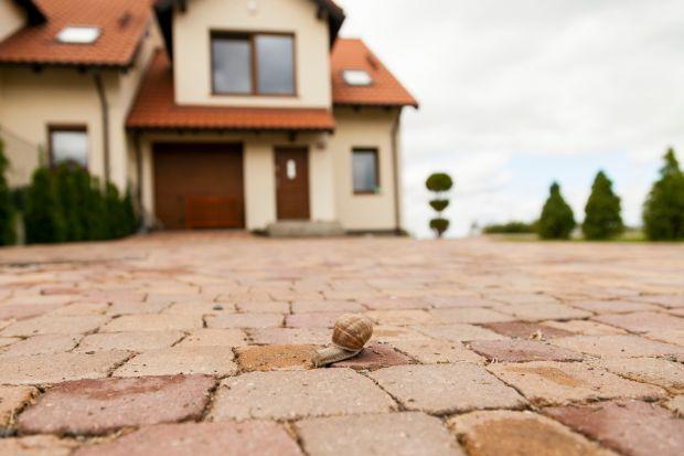Przy realizacji ścieżki ogrodowej czy małego podjazdu, nie spotkamy się z zagadnieniami, które pojawiają się przy brukowanie dużych powierzchni. Warto wcześniej je poznać i na nie przygotować. Przeczytaj ekspercki poradnik!Musis