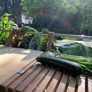 Stół RodTab do przyrządzania i celebrowania posiłków na działce.  Projekt i zdjęcia: Anna Andrzejewska