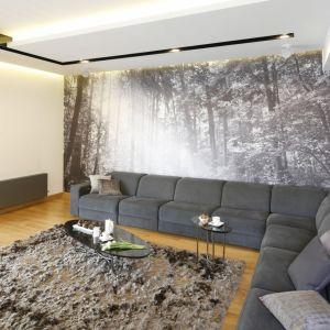 W tym salonie główną ścianę zdobi piękna fototapeta, które doskonale pasuje do ściany wykończonej płytami z betonu. Projekt: Monika i Adam Bronikowscy. Fot. Bartosz Jarosz