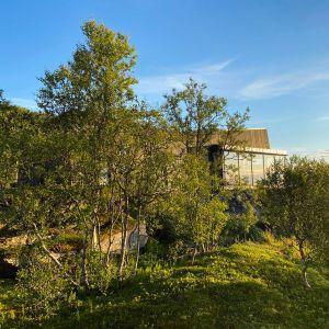 Dom w Norwegii znajduje się w otoczeniu pięknej przyrody. Projekt: Bjørnådal Arkitektstudio. Fot. Hans-Petter Bjørnådal