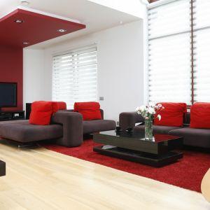 Jedna ściana w salonie została pomalowana na kolor czerwony. W podobnej tonacji kolorystycznej są także poduchy i dywan. Projekt: Michał Mikołajczak, Fot. Bartosz Jarosz