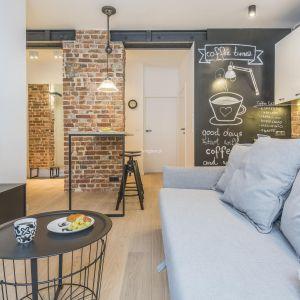 W tym małym salonie projektantki zdecydowały się na prostą jasnoszarą kanapę. Projekt Agnieszka Komorowska-Różycka, Katarzyna Kiełek. Fot. Living Box