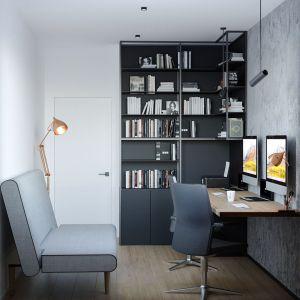 Domowe biuro. Projekt i wizualizacje: Agnieszka Rozmysłowicz, Viann Interior Design