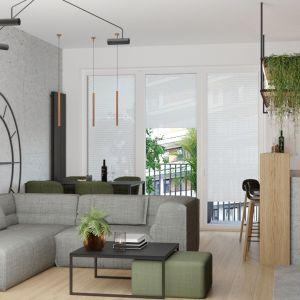Szarości w salonie ożywia odrobina zieleni. Projekt i wizualizacje: Agnieszka Rozmysłowicz, Viann Interior Design