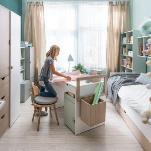 Bartłomiej Pawlak i Łukasz Stawarski zaprojektowali biurka z kolekcji Stige - prosty korpus to podstawa, którą można rozbudowywać o liczne funkcjonalności. Punkt wyjścia stanowi blat z dwiema szufladami, do którego można dostawić np. ruchomy kontener. Mobilny moduł pozwala poszerzyć przestrzeń roboczą, można go też łatwo przemieścić w inną część pomieszczenia czy domu. Biurko Stige wyposażone jest albo w specjalną drabinkę, albo w małe uchwyty.