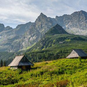 Ze względu na niepewność zagranicznych wyjazdów wiele osób decyduje się na urlop na łonie natury w Polsce. Fot. Hafele AdobeStock