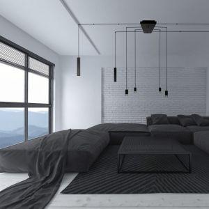Taki typ oświetlenia doskonale więc sprawdzi się w nowoczesnych, minimalistycznych i przestronnych wnętrzach. Fot. Nowodvorski Lighting