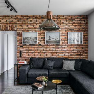 Czerń i ściana wykończone cegłą nadaję salonowi nowoczesnego charakteru. Projekt: Magdalena Bielicka, Maria Zrzelska-Pawlak. Fot. Foto&Mohito