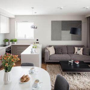 Niewielki salon urządzony jest prosto i nowocześnie. Projekt: Katarzyna Uszok. Fot. Bartosz Jarosz
