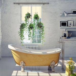 Jeśli na karniszu zawiesimy donice z roślinami, których łodygi i liście będą opadać na przestrzeń okienną, to stworzą nam klimat, a jednocześnie zagwarantują prywatność w ciągu dnia. Fot. Marcin Dekor