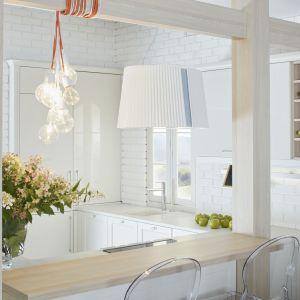 W nowoczesnych rozwiązaniach projektowych stawia się na wygodę i estetykę. Projekt ernestrust/kuchnia S4