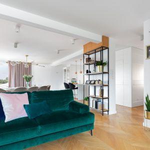 Bardzo ciekawy efekt może przynieść połączenie w mieszkaniu subtelnej zieleni i mocniejszej szarości. Projekt Weronika Budzichowska. Fot. Pion Poziom