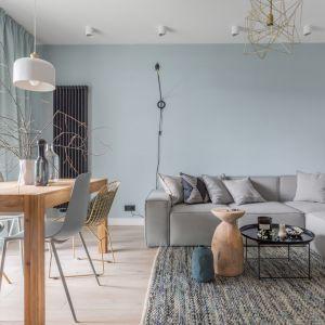 Dywan wpisuje się w spokojną, stonowaną kolorystykę zastosowaną w salonie. Projekt: Alina Fabirowska. Fot. Pion Poziom