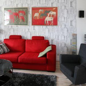 Mocny akcentem kolorystycznym jest nie tylko kanapa, ale również obrazy wyeksponowane na ścianie tuż nad nią. Projekt: Marta Kruk. Fot. Bartosz Jarosz.