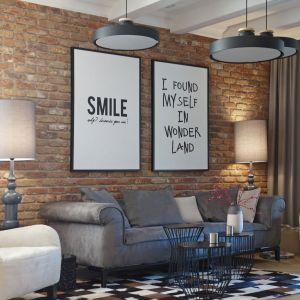 Ścianę za kanapą zdobi ruda cegła. Projekt i zdjęcia: Mikołajska Studio