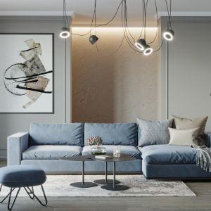 Salon urządzony w odcieniach szarości i niebieskiego. Projekt i wizualizacje: Agnieszka Rozmysłowicz, Viann Interior Design