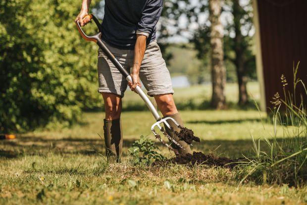 Przed nami jesienne porządki w ogrodzie i tak ważny zabieg jak przekopywanie gleby. To dość wymagająca praca, którą wykonamy sprawnie i z przyjemnością, gdy dobierzemy do niej odpowiednie szpadle czy widły.