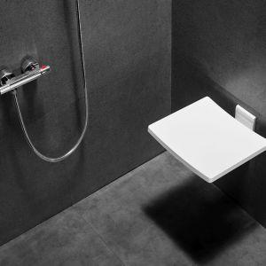 Siedzisko prysznicowe Active. Fot. Besco