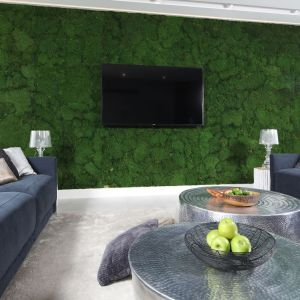 Ściana zieleni (to mech) nadaje nowoczesnemu salonowi wyjątkowy charakter. Projekt: Dariusz Grabowski. Fot. Bartosz Jarosz