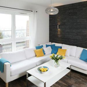 Ściana wykończona czarnym łupkiem to mocny  element dekoracyjny w salonie. Dla kontrastu wybrano białe meble, dlatego mały salon wydaje się większy. Projekt: Katarzyna Uszok. Fot. Bartosz Jarosz