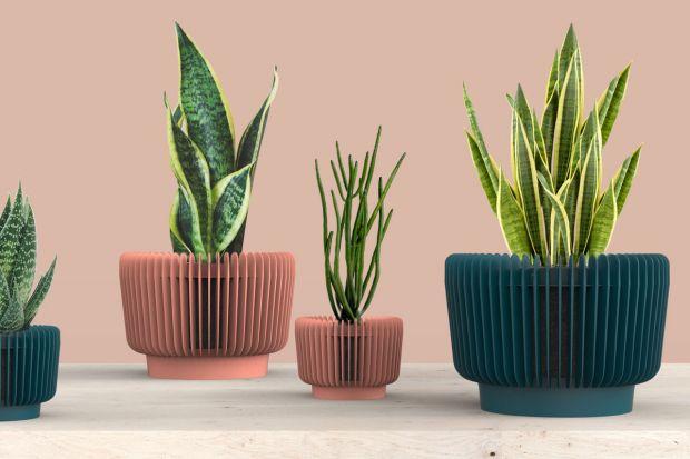 Biophilic design to trend, który na dobre wkroczył do naszym mieszkań. Na rynku znajdziemy coraz więcej ciekawych rozwiązań dla miłośników roślin we wnętrzach. Jednym z nich są wyjątkowe polskie doniczki zaprojektowane przez duet polskich des