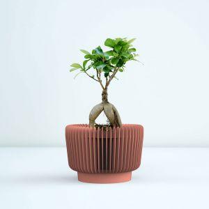 Innowacyjne oddychające doniczki Oxy to projekt duetu Kabo&Pydo. Do tej pory otrzymał już m.in nagrodę Red Dot i IF Design Award. Fot. Opeko