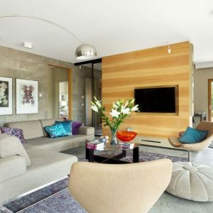 Ściany w salonie zdobią płytki ceramiczne dopasowane do kolorystki podłogi oraz drewniana panele. Projekt: Agnieszka Morawiec. Fot. Anna Laskowska/Dekorialove