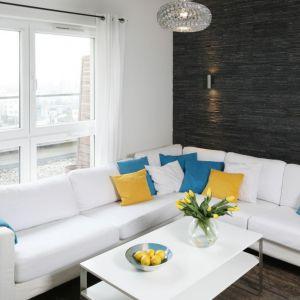 Na ścianie za kanapą zamontowano naturalny czarny łupek. Projekt: Katarzyna Uszok. Fot. Bartosz Jarosz