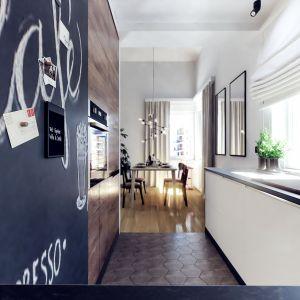 W kuchni poza pełnym wyposażeniem AGD i dużą ilością miejsca do przechowywania, znajduje się również ukryte miejsce dla kota. Projekt i wizualizacje: Monika Staniec, Interior Design