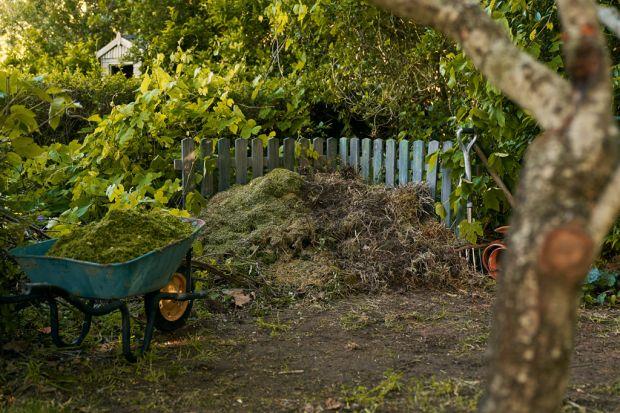 Jesień - czas opadających liści - to idealny moment nazałożenie kompostownika. Jak to zrobić? Podpowiadamy!<br /><br />