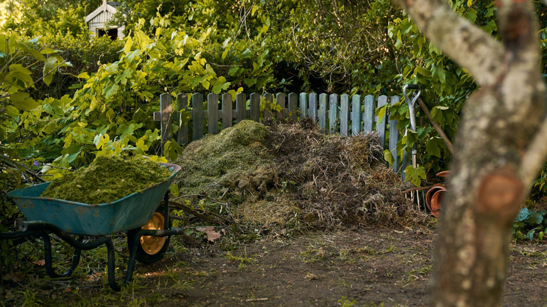 Jesień jest dobrym czasem na rozpoczęcie przygody z kompostowaniem. Bogactwo opadłych liści, trawa koszona po raz ostatni przed zimą, a także duża ilość gałęzi pozostałych po pielęgnacji drzew i krzewów stanowią cenny materiał na kompost. Fot. Sthil