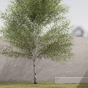 Dom Na Skrzyżowaniu - projekt domu przy ruchliwym skrzyżowaniu, który jednocześnie jest barierą akustyczną. Autorzy projektu: Marek Wawrzyniak, Anna Wawrzyniak, Alina Kudla, Joanna Wawrzyniak, Karol Wawrzyniak, pracownia Toprojekt