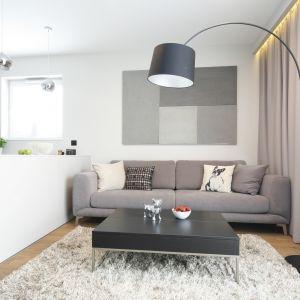 Szara sofa doskonale prezentuje się małym salonie. Projekt Katarzyna Uszok