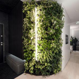 Zielona ściana jest najpiękniejszą ozdobą tego wnętrza. Projekt: pracownia hilight.design