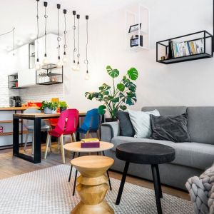 Mała szara kanapa w salonie otwartym na jadalnię i kuchnię. Projekt: Krystyna Dziewanowska, Red Cube Design. Zdjęcia: Mateusz Torbus, 7TH IDEA