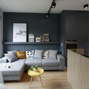 Ścianę za kanapą zdobi cegła pomalowana na ciemny, szary kolor. Projekt Ola Kołodziej, Ula Szmyt. Fot. Bartosz Jarosz