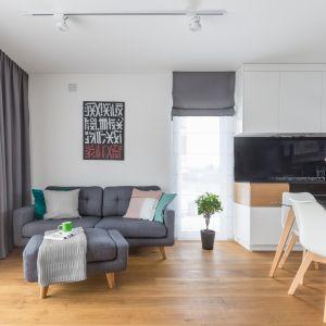 Mały salon organizuje sofa. Projekt Joanna Rej. Fot. Pion Poziom
