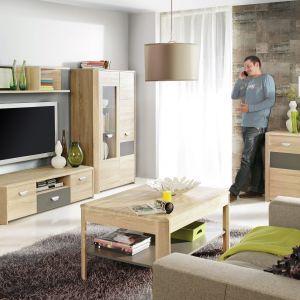 Obecnie  szczególną popularnością cieszą modele szafek pod telewizor wykonane z naturalnych materiałów. Fot. Forte
