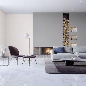 Szary kolor na ścianie można zestawić z jaśniejszym odcieniem, salon wyda się wtedy bardziej przestronny. Fot. Śnieżka