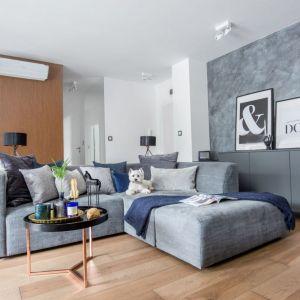 Szary salon. Efekt na ścianie osiągnięty dzięki dekoracyjnemu tynkowi z efektem betonu.  Projekt: Decoroom. Fot. Pion Poziom