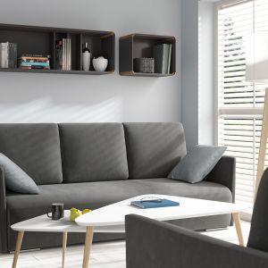 Sofa do salonu z kolekcji Clarc II dostępna w ofercie Black Red White. Cena: 1.284 zł. Fot. Black Red White