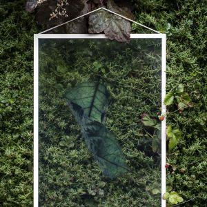 Dekoracje Floating Leaves skandynawskiej marki Moebe dostępne są w Polsce. Kupisz je np. w sklepie Designzoo.pl. Kosztują ok. 127 zł za jedną ramkę. Fot. Moebe