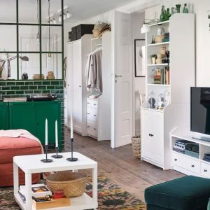 Meble do salonu z kolekcji Hauga dostępne w IKEA. Cena: 1.385 zł (kombinacja regałowa). Fot. IK