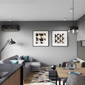 Szara sofa buduje tu strefę wypoczynku w salonie. Projekt: Justyna Krupka, studio projektowe Przestrzenie