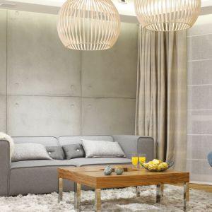 Ściana w salonie wykończona betonowymi płytami. Projekt: Agnieszka Hajdas-Obajtek. Fot. Bartosz Jarosz