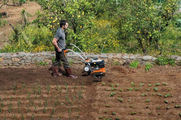 Listopad to ostatni moment, aby zadbać o ogród. Wykonanie pewnych prac teraz sprawi, że na wiosnę będzie nam łatwiej, zadbać o nasz zielony zakątek. Jednym z ważnych zabiegów jest przekopywanie gleby, które warto przeprowadzić jeszcze w listop