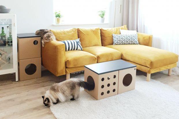 Ale pomysł! Kartonowe meble dla kotów!
