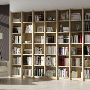 Miejsce na książki w salonie - klasyczny otwarty regał na książki. Fot. FM Bravo