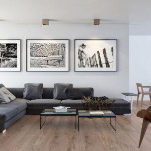 Podłoga w salonie - pomysł na podłogę z paneli. Panele podłogowe z kolekcji Extreme 4V Dąb Mex dostępne w ofercie firmy RuckZuck. Fot RuckZuck